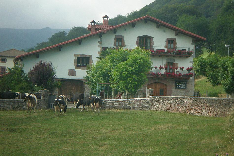 Vacas De La Ganadería Benta Miguel